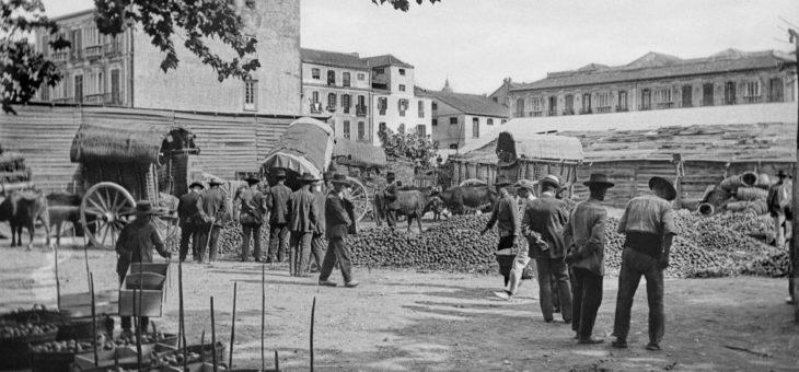 La Vendeja en Málaga, entorno del Muelle de Heredia. Hacia 1910.