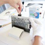 Estabilización de negativos en vidrio rotos